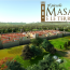 Il piccolo Masaccio e le Terre Nuove